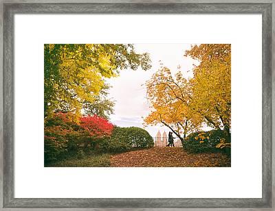 New York Autumn - Central Park Fall Foliage Framed Print