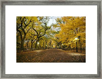 New York City - Autumn - Central Park - Literary Walk Framed Print by Vivienne Gucwa
