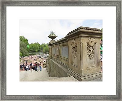 New York City - Central Park - 121214 Framed Print by DC Photographer