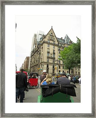 New York City - Central Park - 121219 Framed Print by DC Photographer