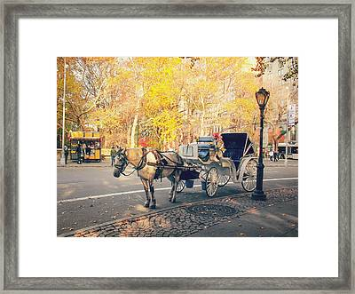 New York City - Horse And Carriage - Autumn Framed Print by Vivienne Gucwa