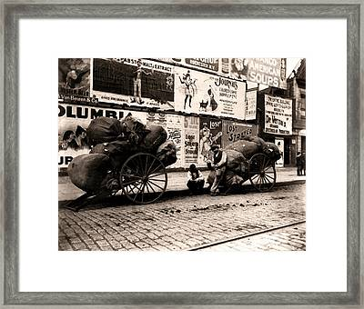 New York City Rag Carts 1896 Framed Print by Unknown