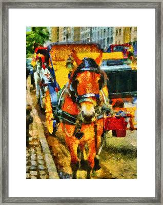 New York Horse And Carriage Framed Print by Dan Sproul