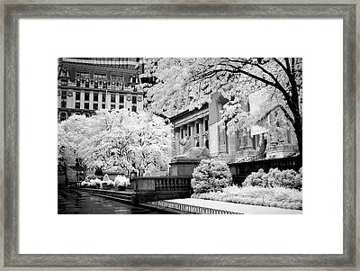 New York Public Library Ir Framed Print