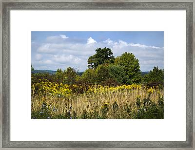 New York September Framed Print