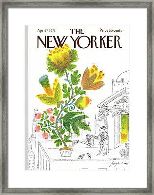 New Yorker April 7th, 1973 Framed Print by Joseph Low