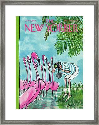 New Yorker January 15th, 1972 Framed Print