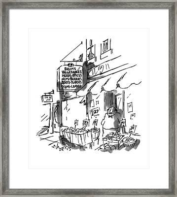 New Yorker July 18th, 1994 Framed Print by Sidney Harris