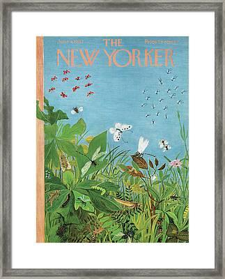 New Yorker June 9th, 1962 Framed Print