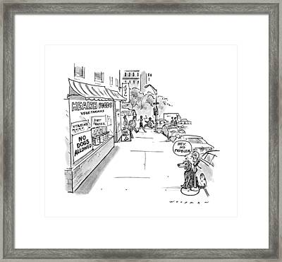 New Yorker May 20th, 1991 Framed Print by Bill Woodman