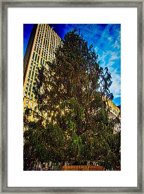 Framed Print featuring the photograph New York's Holiday Tree by Chris Lord