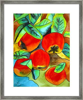 New Zealand Apples Framed Print by Sacha Grossel