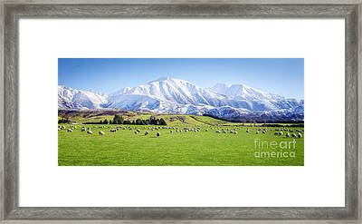 New Zealand Farmland Panorama Framed Print by Colin and Linda McKie