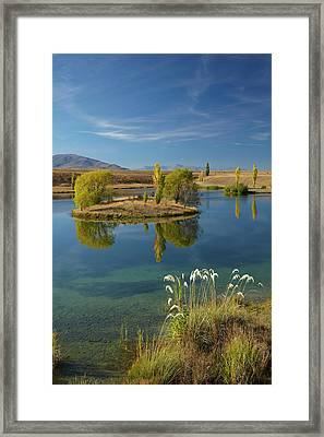 New Zealand, South Island, Mackenzie Framed Print by David Wall
