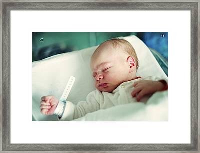 Newborn Boy. First Day Framed Print by Aleksandr Morozov