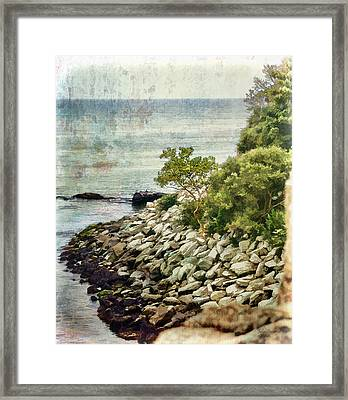 Newport Cliff Walk Framed Print