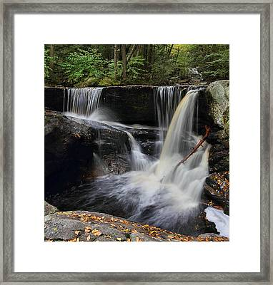 Next To Last Framed Print by Mike Farslow