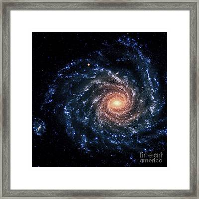Ngc 1232-spiral Galaxy-optical Framed Print by Science Source