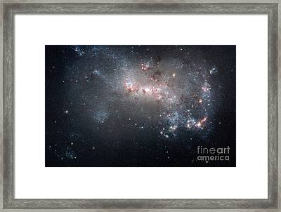 Ngc 4449, Irregular Galaxy Framed Print