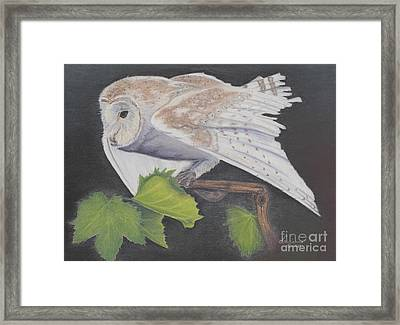 Nght Owl Framed Print by Laurianna Taylor
