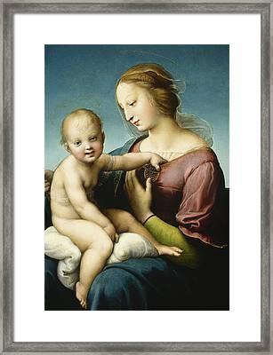 Niccolini Cowper Madonna Framed Print by Raphael