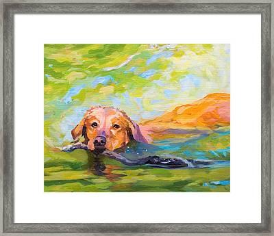 Nice Day For A Swim Framed Print by Janine Hoefler