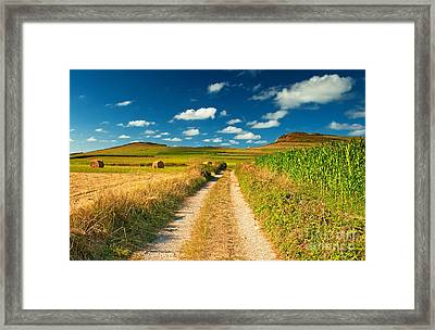 Framed Print featuring the photograph Nice Landscape Summer by Boon Mee