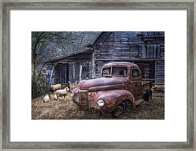 Nice Ride Framed Print by Debra and Dave Vanderlaan