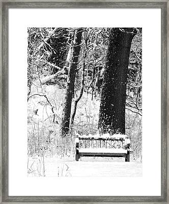 Nichols Arboretum Framed Print by Phil Perkins