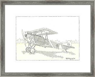 Nickchen Iv Framed Print by L D Williams
