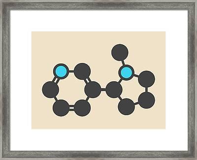 Nicotine Tobacco Stimulant Molecule Framed Print by Molekuul