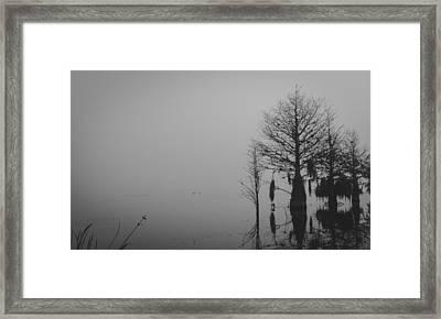 Niebla Framed Print by Michael Paul
