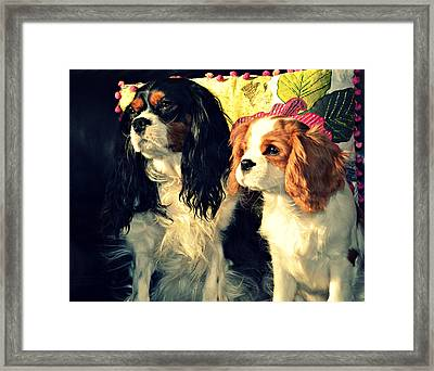 Nigel And Timothy Framed Print