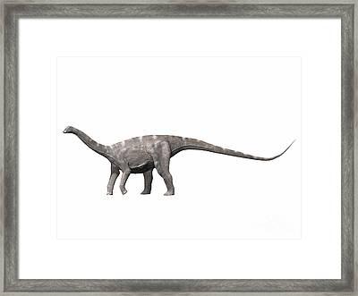 Nigersaurus Taqueti, Early Cretaceous Framed Print by Nobumichi Tamura