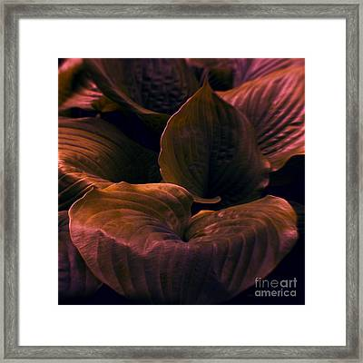 Night Abyss Framed Print