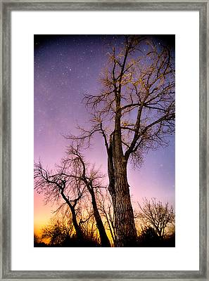 Night And Day Framed Print by James BO  Insogna