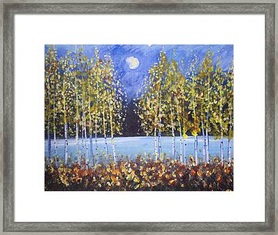 Night Aspens  Framed Print