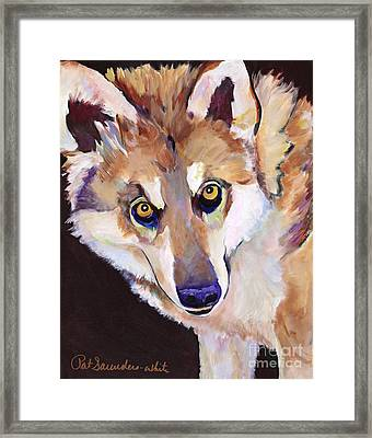 Night Eyes Framed Print by Pat Saunders-White