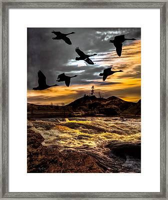 Night Flight Framed Print by Bob Orsillo