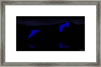 Night Flight Of The Egrets Framed Print by Mark Fuge