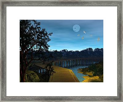 Night In The Jersey Pines Framed Print by John Pangia