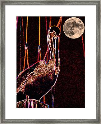 Framed Print featuring the photograph Night Light by Robert McCubbin