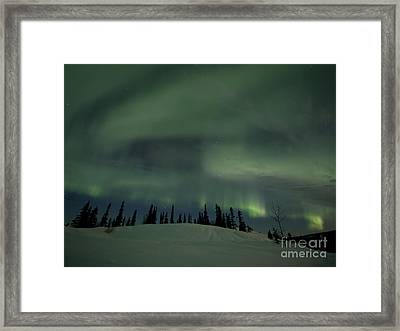 Night Lights Framed Print by Priska Wettstein