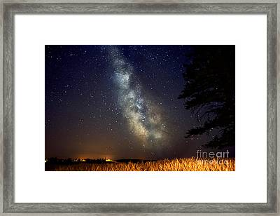 Night Moves Framed Print by Beve Brown-Clark Photography