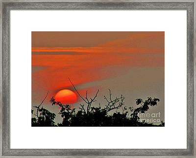 Night Night World... Framed Print by Katy Mei