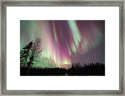 Night Of Colour Framed Print