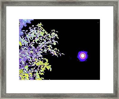 Night Of The Eclipse Framed Print