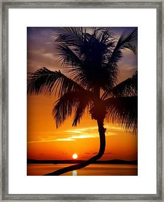 Night Of The Sun Framed Print by Karen Wiles