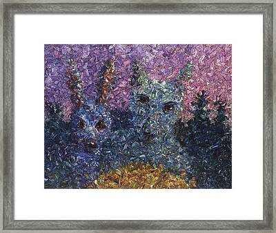 Night Offering Framed Print by James W Johnson