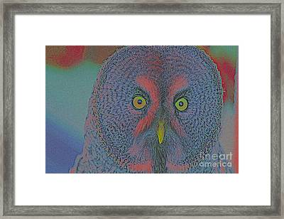 Night Owl Framed Print by Celestial Images